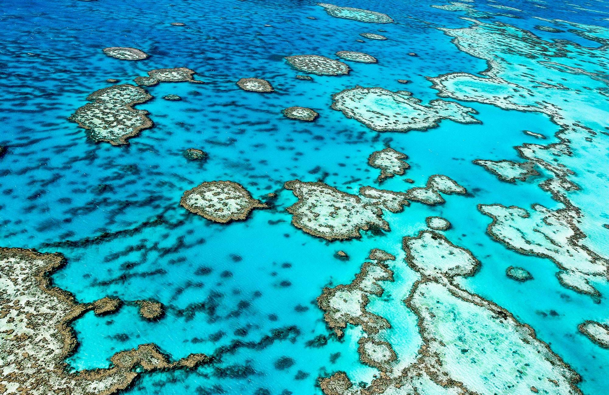 great-barrier-reef-queensland-australia-cover