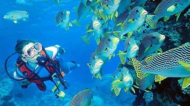 10_Australia_Great_Barrier_Reef